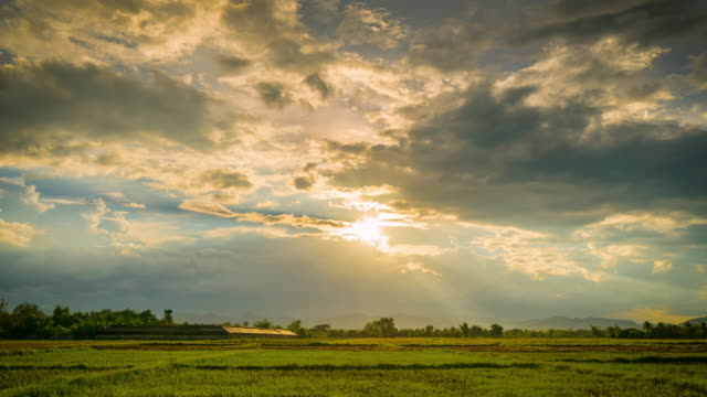 field and clouds with sunrays 4k time lapse - sunset stock videos & royalty-free footage