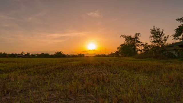 field and sunrise time lapse - scena rurale video stock e b–roll