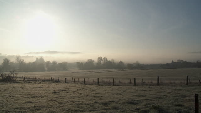ws pan field at mist and frosty morning / virton, luxemburg, belgium - fog stock videos & royalty-free footage