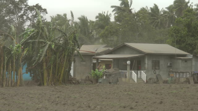 field covered in ash and dust blows through air in strong wind after taal volcano erupts in philippines - taal volcano stock videos & royalty-free footage