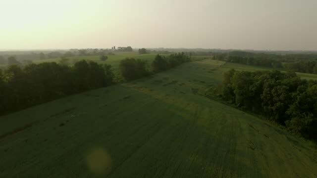 Field & Farm