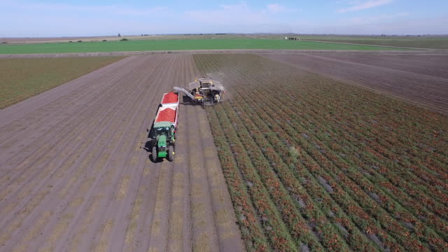 field & harvester drone pov - wiese stock videos & royalty-free footage