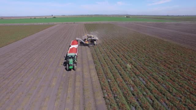 field & harvester drone pov - wiese video stock e b–roll