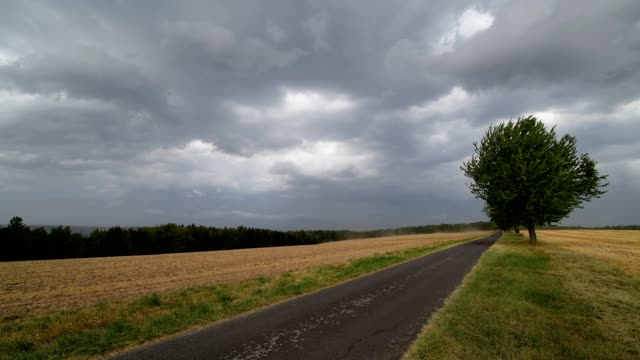field landscape with approaching thunderstorm in summer - gewitter stock-videos und b-roll-filmmaterial