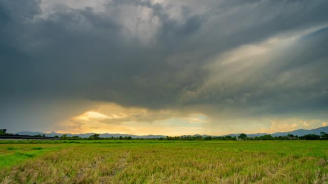 vídeos de stock, filmes e b-roll de prado de campo e nuvens movendo-se pôr do sol 4k lapso de tempo. - pasture
