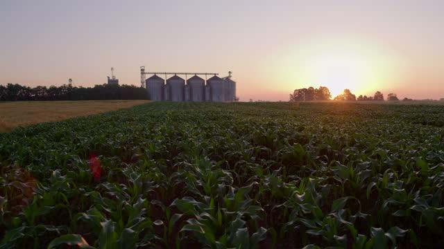 vídeos y material grabado en eventos de stock de slo mo campo de maíz y silos al atardecer - compartimiento para almacenamiento