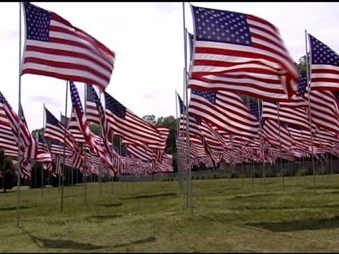 Field of Countless American Flags