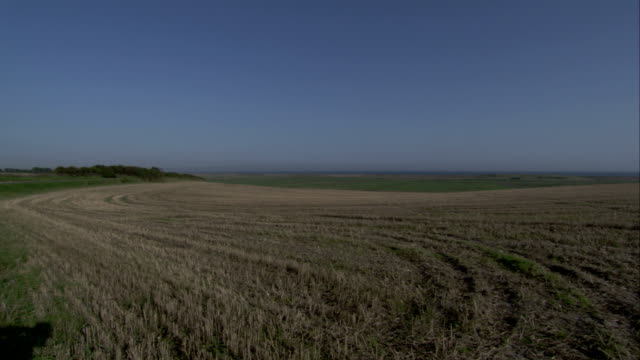 a field of crop stubble stretches across the norfolk countryside. available in hd. - stubble stock videos & royalty-free footage