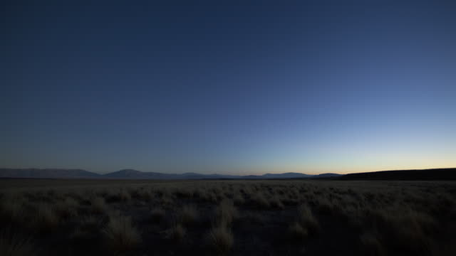 WS T/L Field of tussock from day to night / Central Otago, New Zealand
