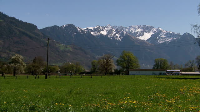 field of wildflowers and house at the base of snowy alps. - bavarian alps stock videos & royalty-free footage