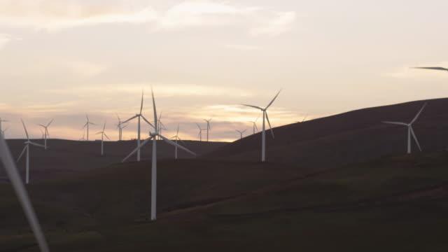 stockvideo's en b-roll-footage met gebied van windmolens draaien in de schemering - fatcamera