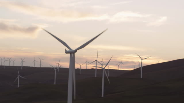field of windmills spinning at dusk - mill stock videos and b-roll footage
