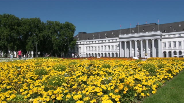 WS Field of yellow marigold infront of electoral palace / Koblenz, Rhineland-Palatinate, Germany