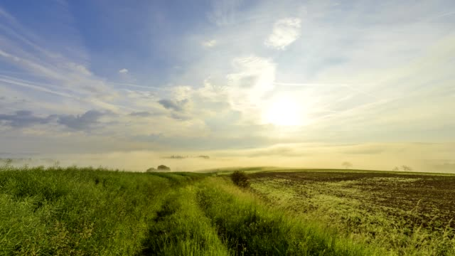 field path at sunrise with morning mist, großheubach, spessart, franconia, bavaria, germany - 30 seconds or greater stock videos & royalty-free footage