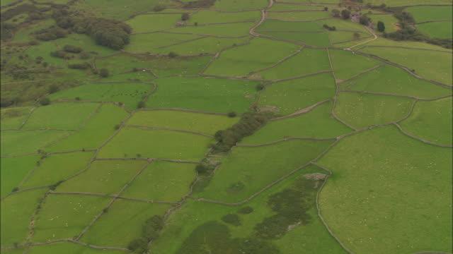 Field Patterns East Of Llanbedr