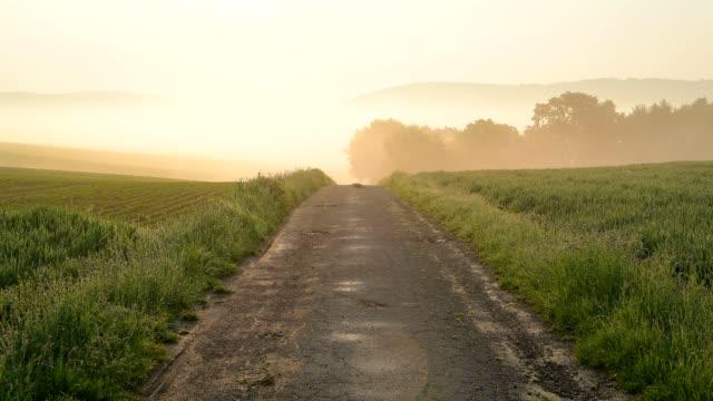 field road with sun and morning fog, spessart, bavaria, germany - ländliche straße stock-videos und b-roll-filmmaterial
