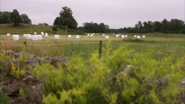 A field Skane Sweden.