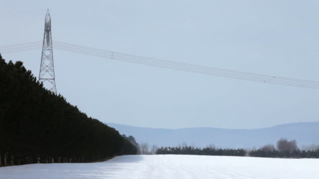 a field with a mountain full of trees and an electric pillar on top of it with electric transmission lines going from side to side of the frame - 1 minute or greater stock videos & royalty-free footage
