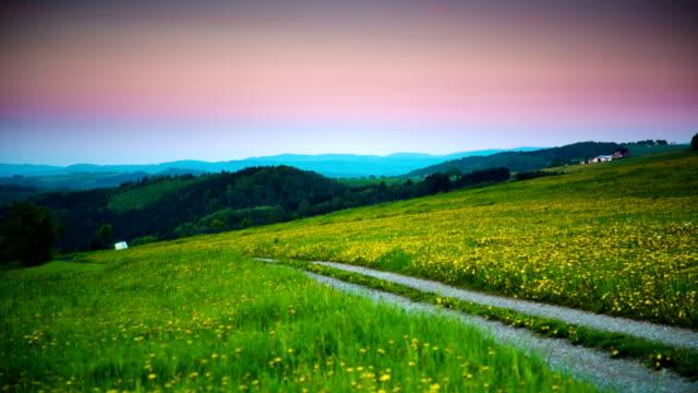 KRANICH BIS: Feld mit Gehweg