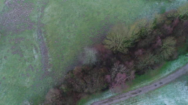 field with frozen grass, forest seen by drone - normandy stock videos and b-roll footage