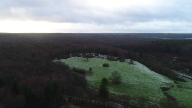 field with frozen grass, forest seen by drone - normandie stock-videos und b-roll-filmmaterial