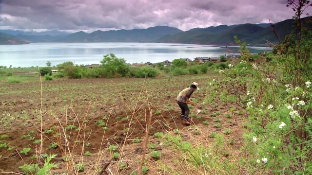 field work on chinese province - minority groups stock videos & royalty-free footage