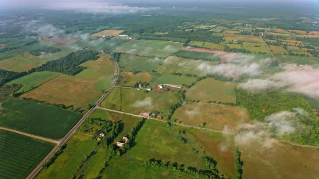 aerial fields and farms basking in the sun in ontario, canada - ontario canada stock videos & royalty-free footage