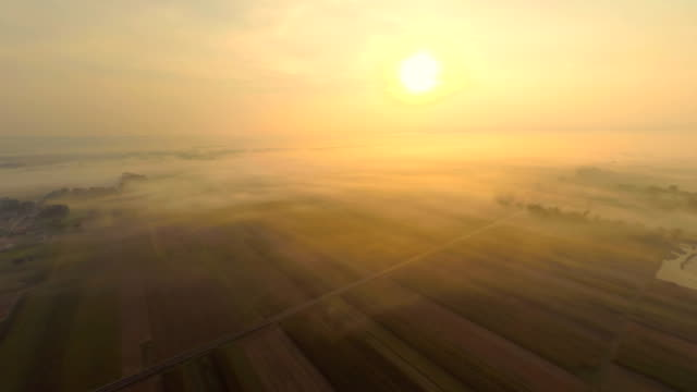 aerial fields am morgen nebel - multikopter stock-videos und b-roll-filmmaterial