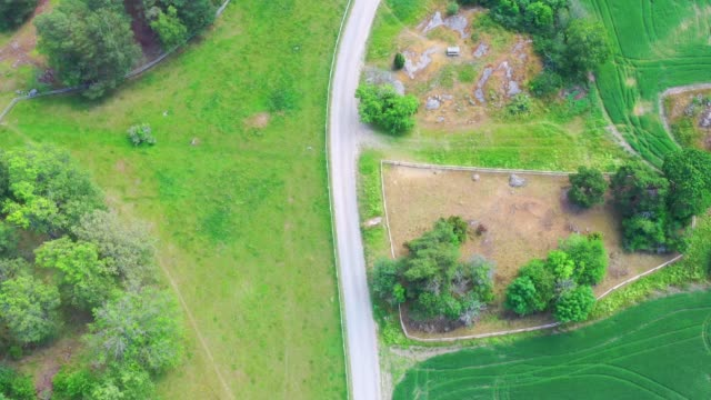 fields landscape, aerial view from above, single road - farm stock videos & royalty-free footage
