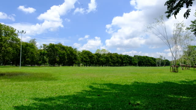fields of green lawns and trees with cloudscape - park stock videos & royalty-free footage