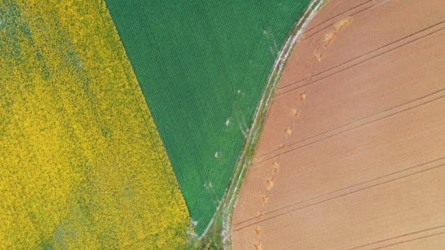 fields pattern - 春点の映像素材/bロール