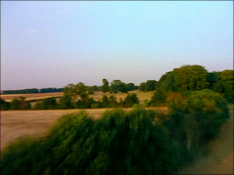 aerial fields + trees in english countryside / shottesbrooke, berkshire - english culture stock videos & royalty-free footage