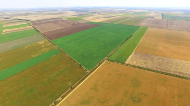 fields with different agricultural crop types, aerial video - land stock videos and b-roll footage