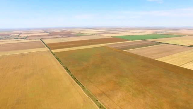 航空写真: 異なるフィールド作物の種類 - クワッドコプター点の映像素材/bロール