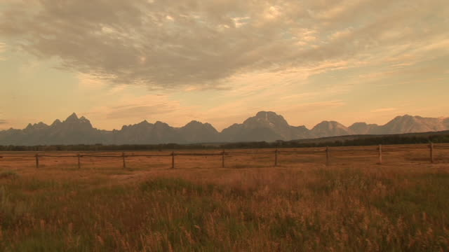 WS, ZI, Fields with mountain range in background, Grand Teton National Park, Wyoming, USA