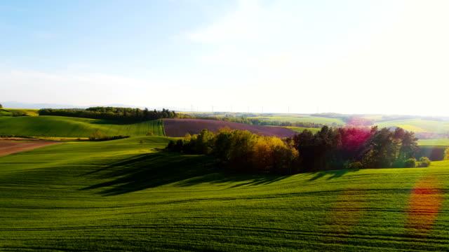 Champs avec différents types d'agriculture 4K