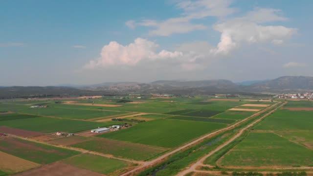 vidéos et rushes de champs avec différents types d'agriculture - bovin