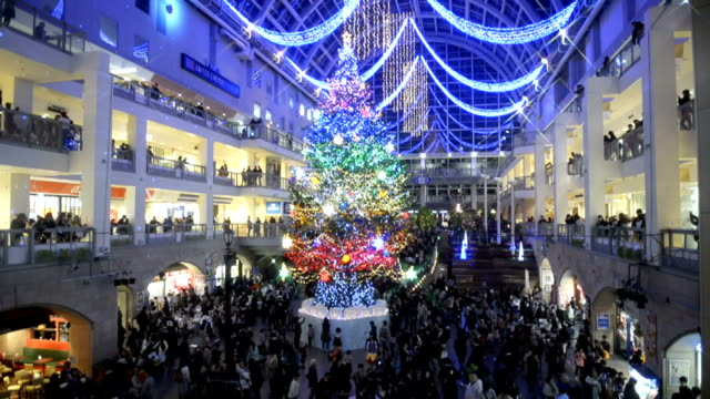 A fifteenmeter tall Christmas tree emerged in a central Sapporo shopping center on Saturday November 1 The big fir tree was a gift from southern...