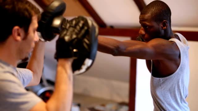 vídeos de stock, filmes e b-roll de lutar contra alvos de esportes - posição de combate