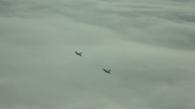 f-16 fighter jets fly above the clouds. - fighter stock videos & royalty-free footage