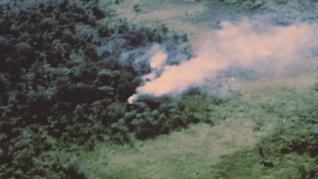 fighter planes firing at jungle explosions among trees and chinook helicopter flying in field gun / vietnam - vietnam war stock videos & royalty-free footage