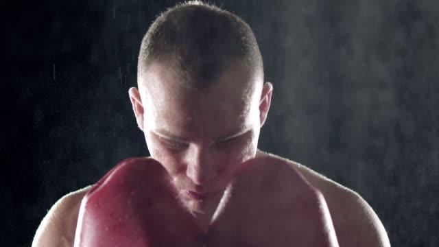 vídeos de stock, filmes e b-roll de lutador - posição de combate