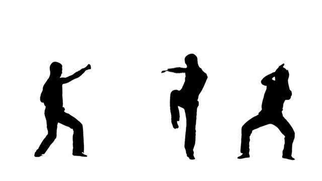 vídeos de stock, filmes e b-roll de guerreiros-perfis dos atletas - karate