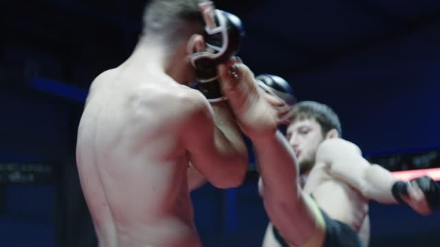 mmaは戦う。ハイキック - 筋肉質点の映像素材/bロール