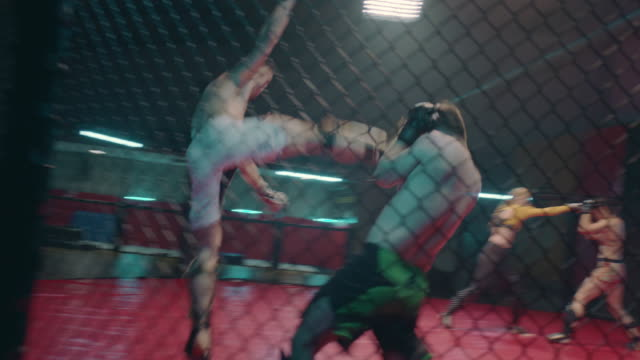 mma fights in octagon. two training fights. kicks - octagon stock videos & royalty-free footage