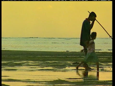fijian families on deserted beach at golden sunset their image is reflected in the gently lapping water fiji - fiji stock videos & royalty-free footage