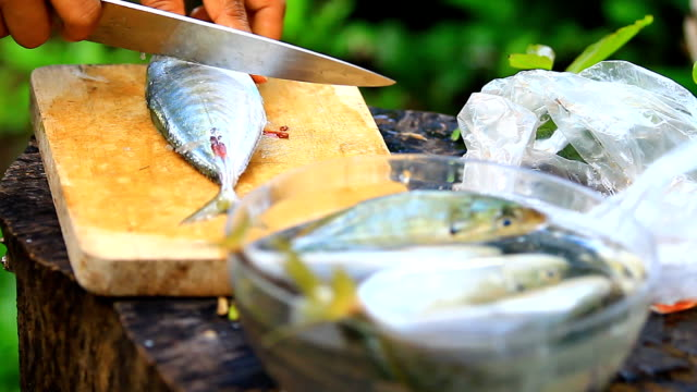 filleted fish - fillet stock videos and b-roll footage