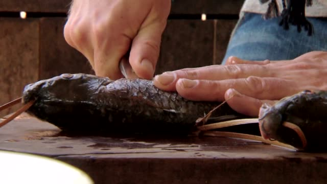 filleting fish - filleted stock videos & royalty-free footage