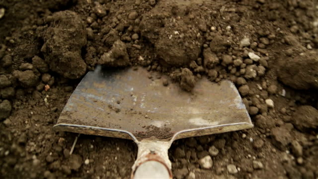 filling up the wheelbarrow - digging stock videos & royalty-free footage