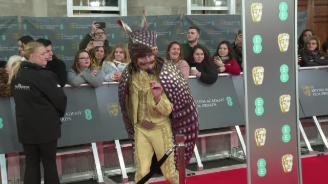 red carpet arrival and interviews england london royal albert hall bafta film awards ext people waiting along barriers / various close shots of bafta... - graham norton comedian stock videos & royalty-free footage